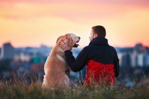 Man-and-Dog–1080×675